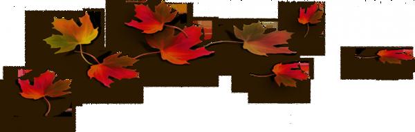 Poeme les feuilles mortes remy de gourmont feuille - Dessin feuille morte ...